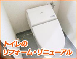 side_toilet